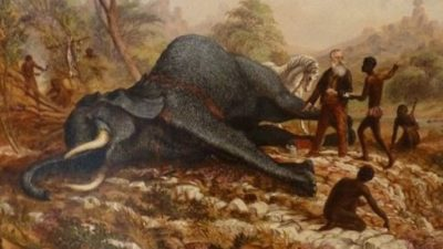 A 19th century watercolour painting showing a dead elephant lying on broken gound near the elephant is the white-bearded hunter Henry Hartley. Several naked African men are pointing to the gold seam in a hole in the earth.