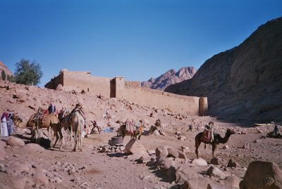 The outer fortifications of the ST Catherine's Monastery are on a rise behind a group of Bedouin and their camelsn