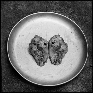 A round tin plate contains the heads of two sheep facing each other.