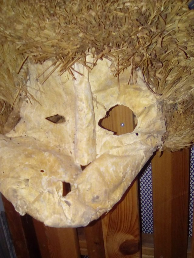 The image shows a fragile mask made of skin